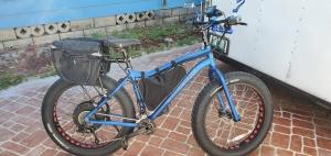 Electric Bike St Petersburg Florida